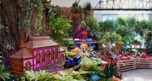 The train show at the U.S. Botanic Garden makes our list of DC-area holiday events for kids with special needs