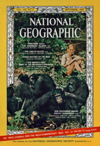 Dr. Jane Goodall on December 1965 cover of National Geographic magazine