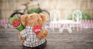 Teddy Bear Tea Party for Valentine's Day in Northern Virginia