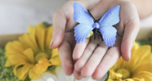 How to make a butterfly sensory bin for toddlers