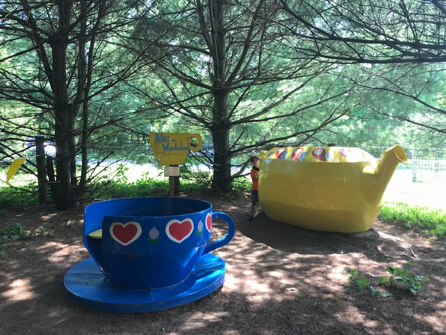 Enchanted Forest at Clark Elioak Farm