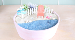 How to make a DIY beach fairy garden