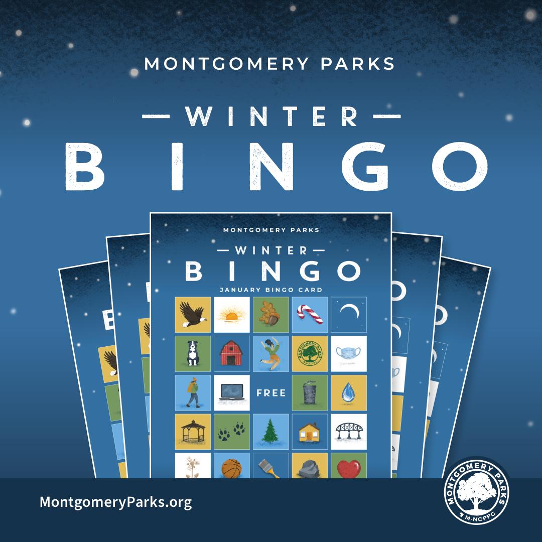 Virtual Winter Bingo