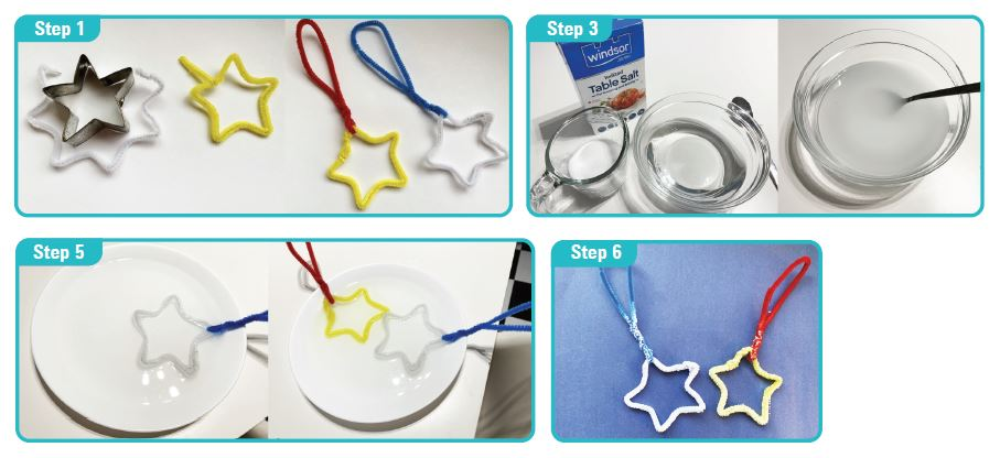 Mad Science Crystal Star Ornament STEM Activity