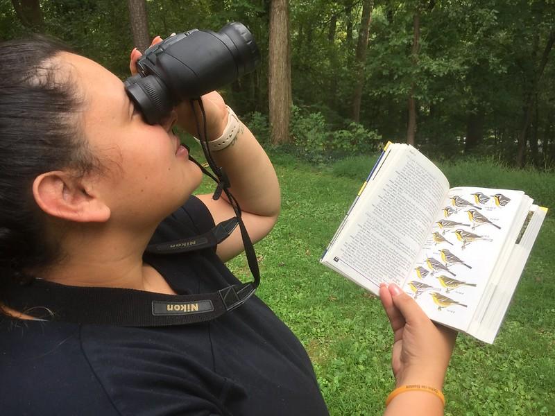 Open Birding Hours